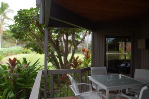 lanai table and garden view