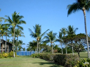 Kona condo fairway front setting with ocean beyond