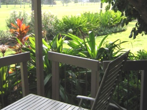 Lanai lounger with garden view