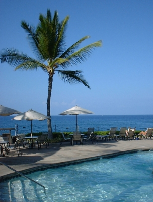 Oceanfront pool and palm tree, Kanaloa resort